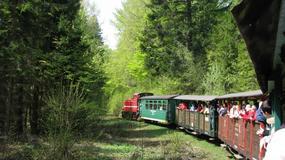 Rekordowa liczba osób podróżuje Bieszczadzką Kolejką Leśną