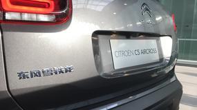 Za rok w Europie. Oto nowy model Citroena.