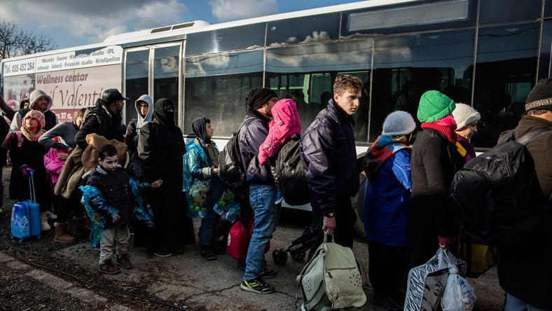 A szerb-horvát és a szerb-magyar határra is érkeznek folyamatosan a menekültek / Fotó: Northfoto