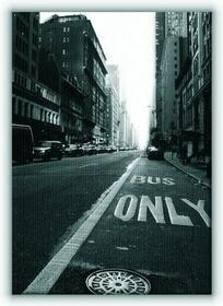 New York, only - Obraz na płótnie
