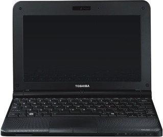 """Toshiba NB250-101 10,1"""", Atom 1,66GHz, 1GB RAM, 160GB HDD (PLL2PE-001029PL)"""