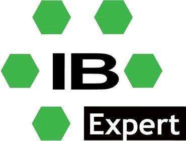 IBEXPERT KG IBExpert - licencja elektroniczna