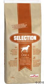 Royal Canin Selection Croc plus 15 kg