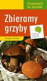 Okołów Grzegorz Zbieramy grzyby
