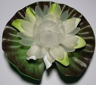 Lilia wodna zmieniająca kolory.Lampa solarna