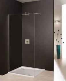 Sanplast Free Line - Wolnostojąca ścianka prysznicowa 90 x 195 600-260-0430-42-4
