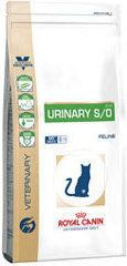 Royal Canin Cat Urinary S/O LP34 6 kg