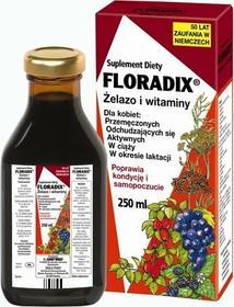 Salus Floradix Żelazo i Witaminy 250 ml