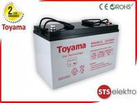 Toyama Akumulator żelowy NPG100-12 100Ah 12V