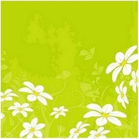 Margaritki - Obraz, reprodukcja