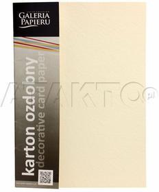 Idest Karton wizytówkowy A4 230g biały/skóra (20) AG6404