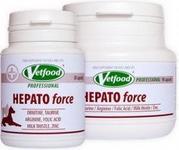 Hepato force 90 kaps