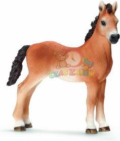 Schleich Koń roczniak rasy Tennessee Walker 13714