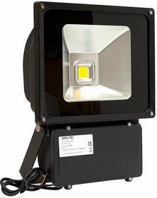 Naświetlacz ZEWNĘTRZNY ABILITE HI POWER LED 70W IP65 B.ZIMNY 3500(Lm) 230V/70.0W