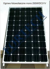 Fortech panel fotowoltaiczny monokrystaliczny - fotoogniwo 250 W DSP-250M