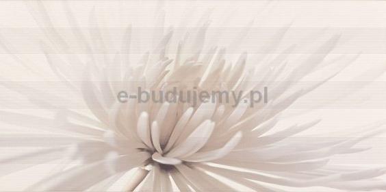 Opoczno Avangarde flower centro 60x29,7