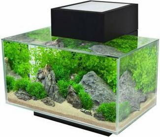 Fluval Edge I Akwarium - Kolor cynkowy, dł. x szer. x 43 x 26 x 22,4 cm 290365.1