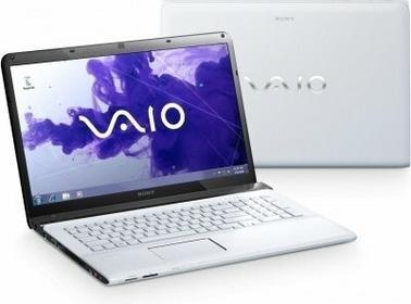 Sony VAIO SVE1713E1E 17,3