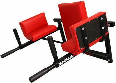 Magnus Poręcze ściana brzuch triceps Power