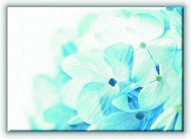 Kwiaty - Obraz na płótnie