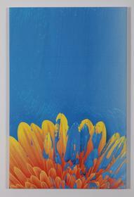 Obraz Flower - 39 x 60 cm