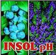 INSOL PH A 0.2