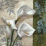 Paper Design Serwetki do decoupage 33x33cm WHITE BEAUTIES 21709