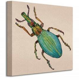 Weevil - Obraz na płótnie