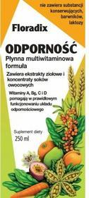 Salus Floradix Odporność 250 ml