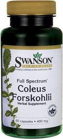 SWANSON Forskohlii Forskolina 400mg 60 szt.