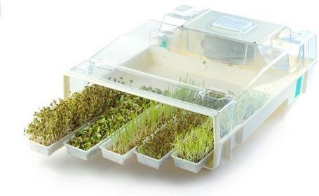 Automatyczna kiełkownica (mikro farma) EasyGreen Mikrofarm T easy001