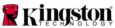 Kingston Pamięć serwerowa memory D4 21338GB ECC 1,2V - KVR21E15D8/8