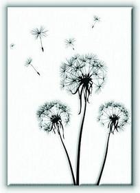 Dmuchawce - Obraz na płótnie