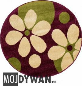 MojDywan.pl Dywan Tedy flowers fioletowy/zielony 200x200 Okrągły
