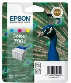 Epson T0010