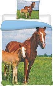 Jerry Fabrics Pościel bawełna Konie, 140x200 cm, 70 x 90 cm
