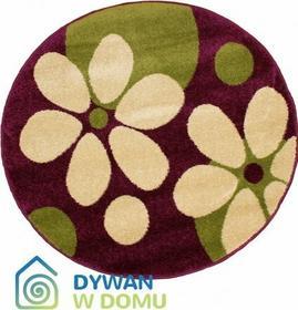 Dywan Toys flowers fioletowy/zielony 200x200 Okrągły
