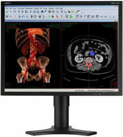 NEC MDview 213 Medyczny