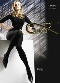 Gatta Celia