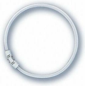 Leuci TL5 22W840 ŚWIETLÓWKA Świetlówka kołowa G24D2