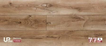 Kronopol Dąb Cytryn UP2954- AC5-10mm Panele podłogowe - UPline- Pareto+
