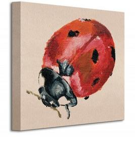 Ladybird - Obraz na płótnie