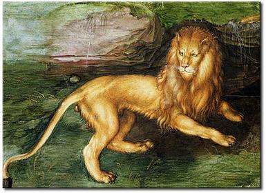 Bimago Obraz Lion 53861