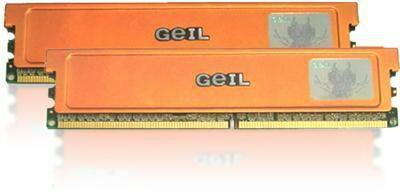 Geil 2 GB GX22GB6400UDC
