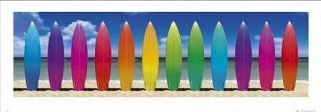 Surf Boards - Obraz, reprodukcja