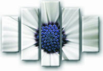 Biały kwiat - Obraz na płótnie