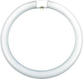 Kanlux FCL-32W/4P 2700K ŚWIETLÓWKA KOMPAKTOWA Świetlówka kołowa