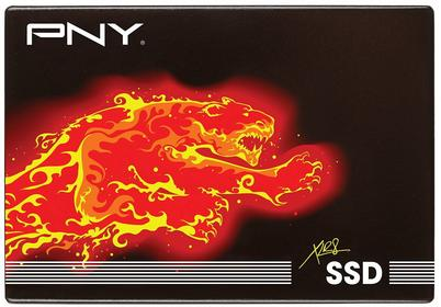 PNY SSD7CS2111-240-RB