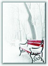 Czerwona Ławka, w śniegu - Obraz na płótnie