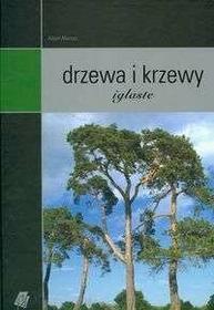 Marosz Adam Drzewa i krzewy iglaste